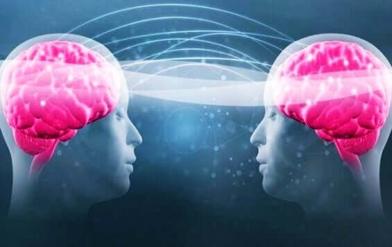 Connessione tra due cervelli