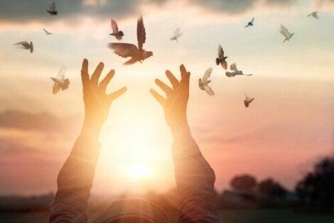 Mani che liberano colombe in cielo e la resilienza