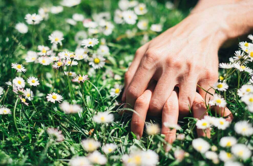 Mani intrecciate su prato fiorito
