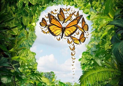 Mente con farfalle