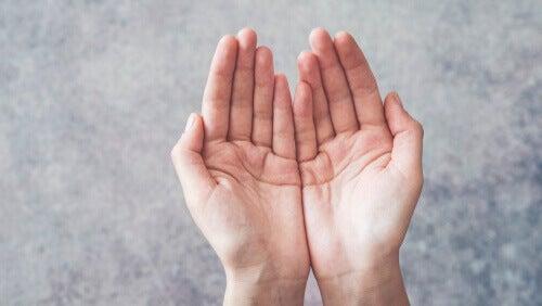 Palmo delle mani