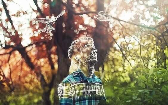 Sagoma tridimensionale di uomo e uccelli nel bosco.
