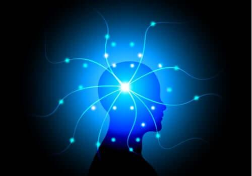 Testa di profilo con collegamenti neurali