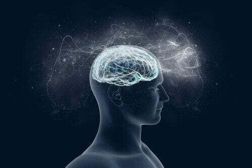 Come funziona la mente