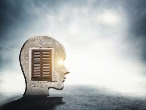 Illustrazione di una testa con finestra.
