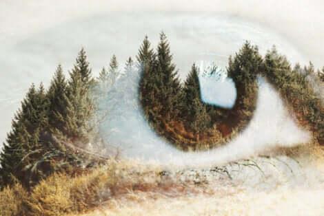 Occhio con paesaggio in trasparenza.