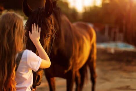 Bambina che accarezza un cavallo.