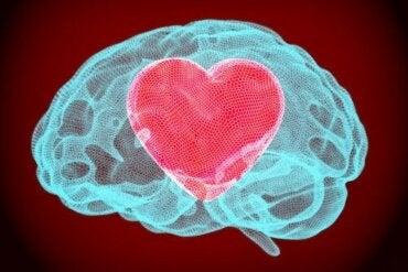 L'autoregolazione emotiva può essere allenata