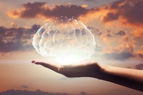 Rappresentazione ed del cervello in mano.