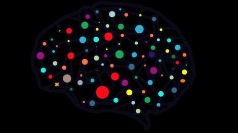 Euristica della disponibilità e connessioni nel cervello.
