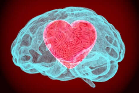 Cuore e cervello in una illustrazione.