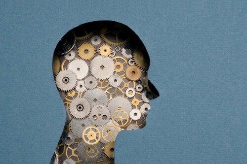 Neuropsicologia forense: obiettivi e applicazione