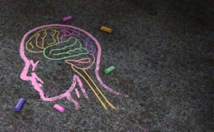 Cervello disegnato con gessetti colorati sul pavimento.
