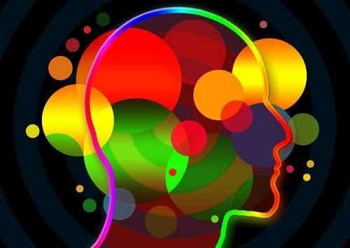 Competenze socio-emotive: quali sono?
