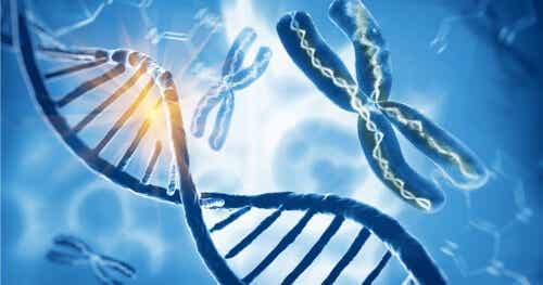 Sindrome di Klinefelter: un cromosoma X di troppo negli uomini