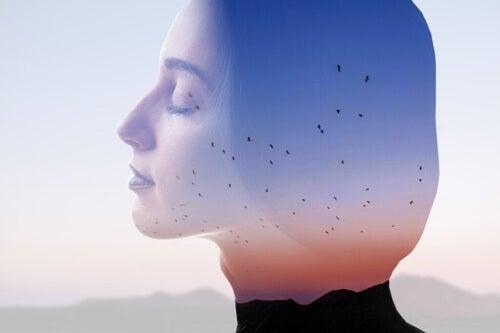 Nutrire la mente: perché è importante