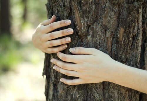 Donna che abbraccia un albero in nome dello ecofemminismo.