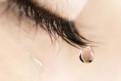 Ciglia con lacrima.