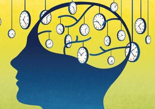 Cervello con dentro gli orologi cerebrali.