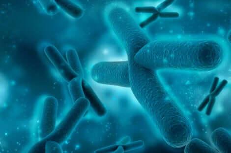 Le alterazioni genetiche sono una delle cause della pachigiria.