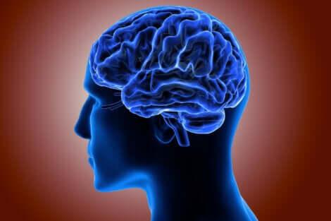 Disegno in 3D blu della testa e del cervello.