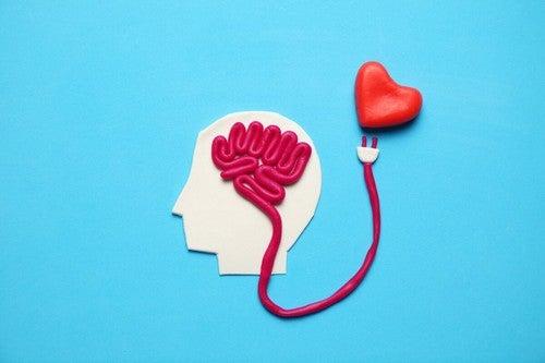 Effetti sul cervello degli ormoni della felicità.
