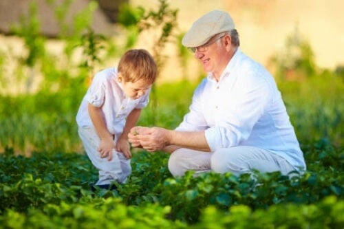 Nonno e nipote che coltivano l'orto.