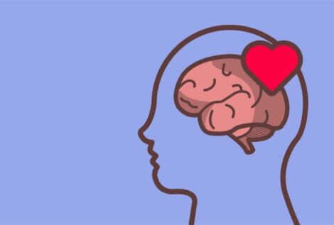 Sagoma della testa con cervello e cuore.
