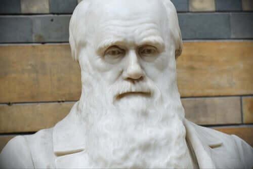 Citazioni di Charles Darwin