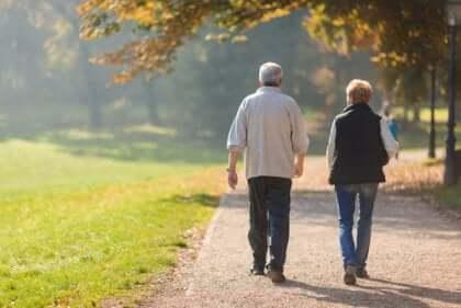 Coppia anziana passeggia nel parco.