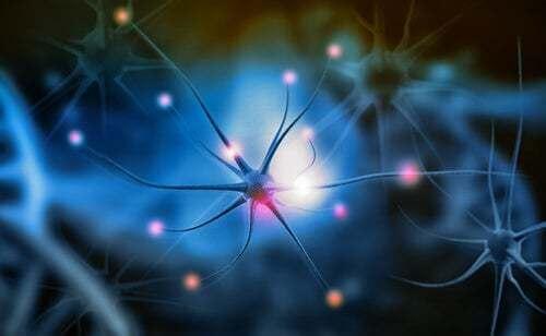 Neuroni e percezione del colore.