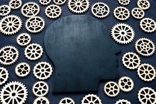 Il quoziente d'intelligenza e la sua evoluzione