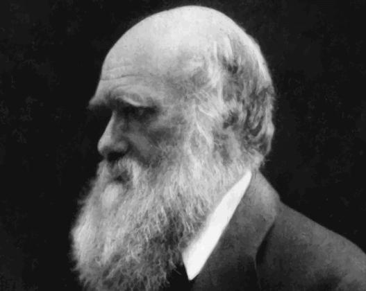 Charles Darwin e origine delle religioni