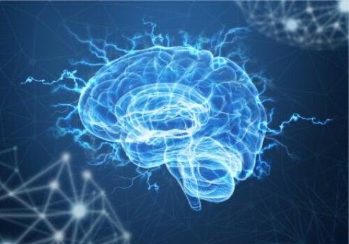 Illustrazione con cervello blu.