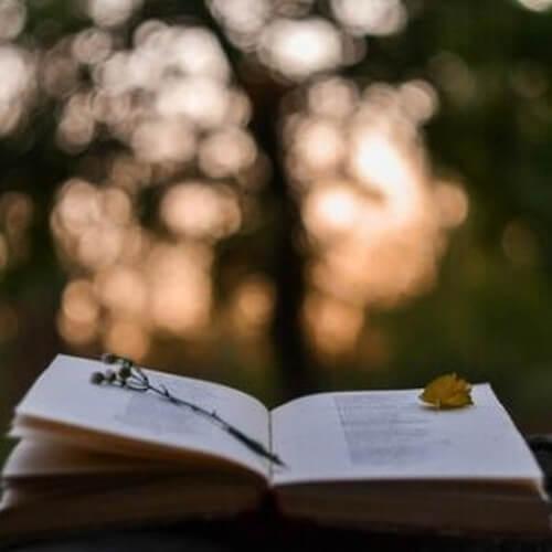 Effetti della poesia sul cervello