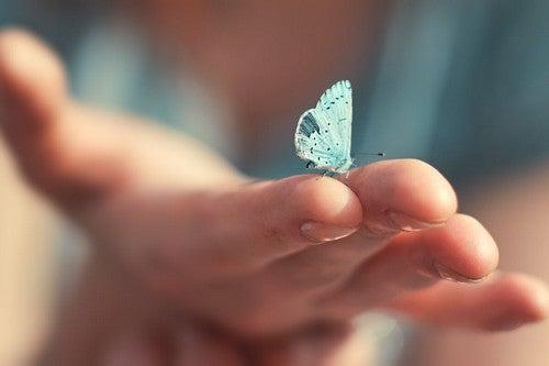 L'intuito è naturale e farfalla sulla mano.