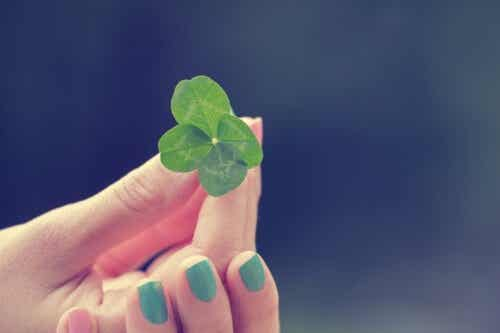 Cosa è la fortuna: intelligenza o casualità?