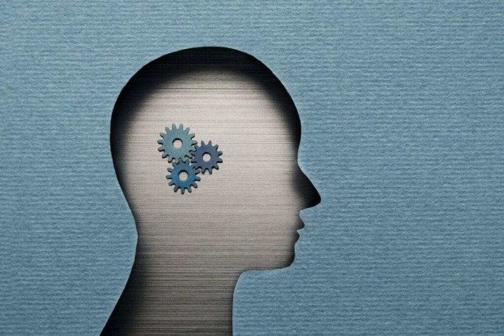 Ingranaggi del cervello.
