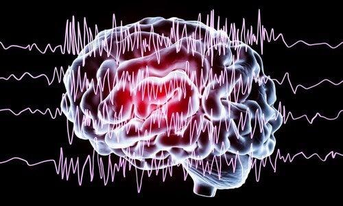 Effetti del sonno interrotto sul cervello.