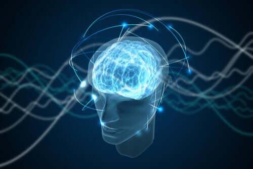 Coscienza quantica: affascinante teoria