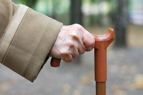 Cane Fu: nuova arte marziale per gli anziani