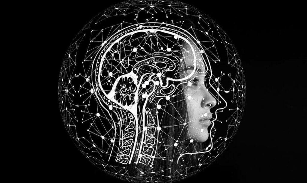 Immagine cervello di donna.