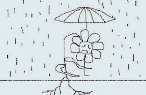 Fiore sotto un ombrello.