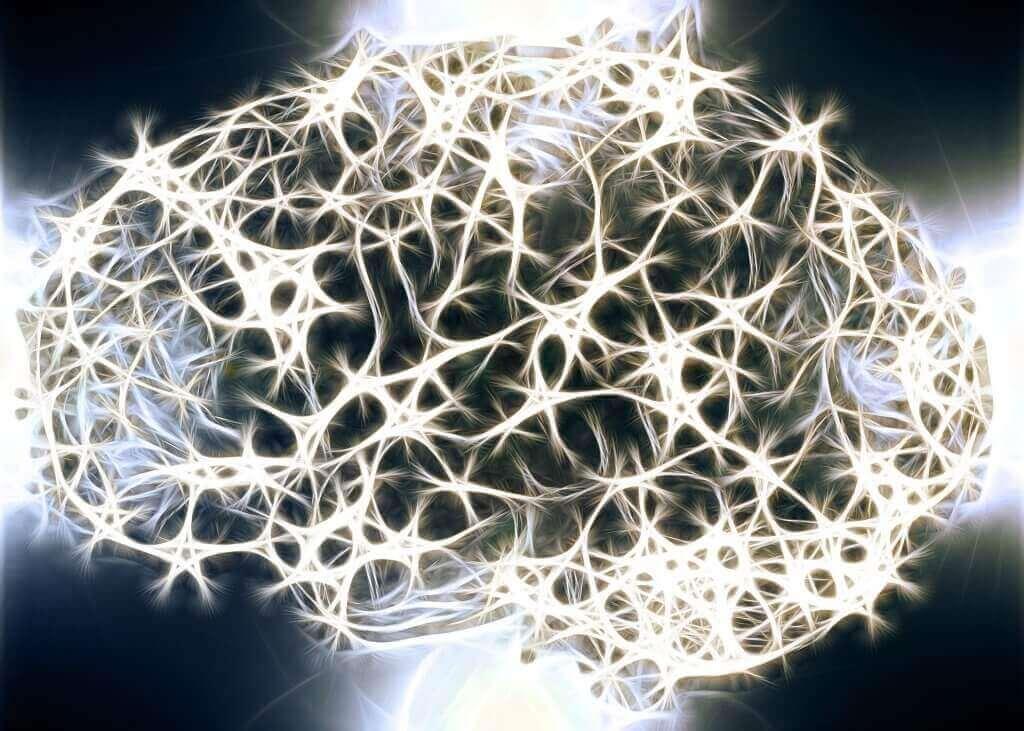 Neuroni del cervello.