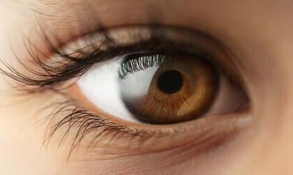 Occhio di donna.