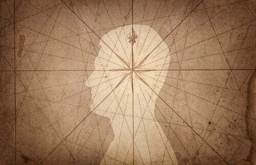 Illustrazione di un profilo umano.