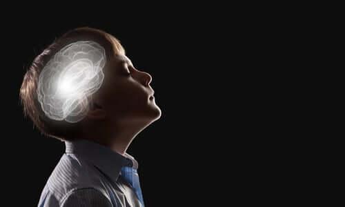 Effetti della musica sul cervello.