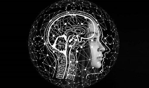 Ristrutturazione del cervello.