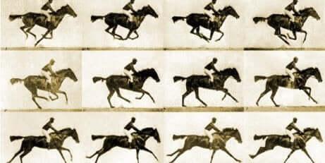 Fotogrammi di cavalli in movimento.