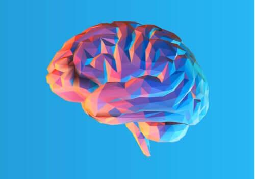 Il cervello bilingue, come funziona?